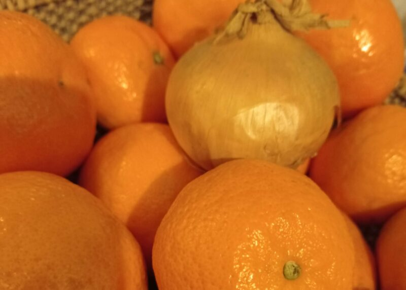 The IT World was sweet as Oranges ... Will Quantum computing be spicy as onions?